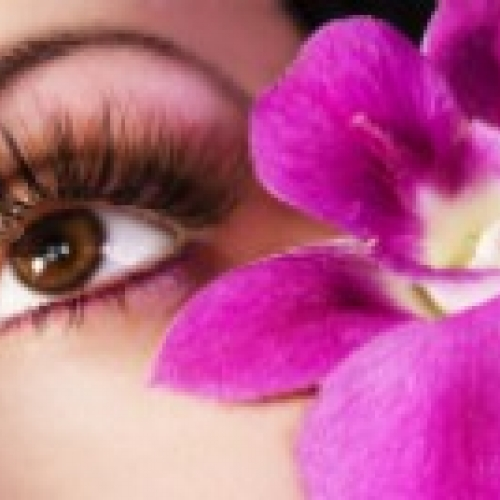 One on One Lash Extensions