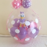 daisy bubble